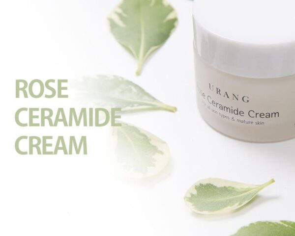 URANG Rose Ceramide Cream 50ml 1.69 fl oz 1