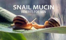 Snail mucin benefits for skin