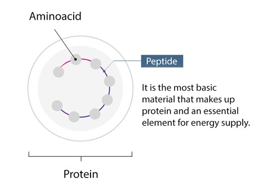 A complex of 9 peptides by Dr.Althea