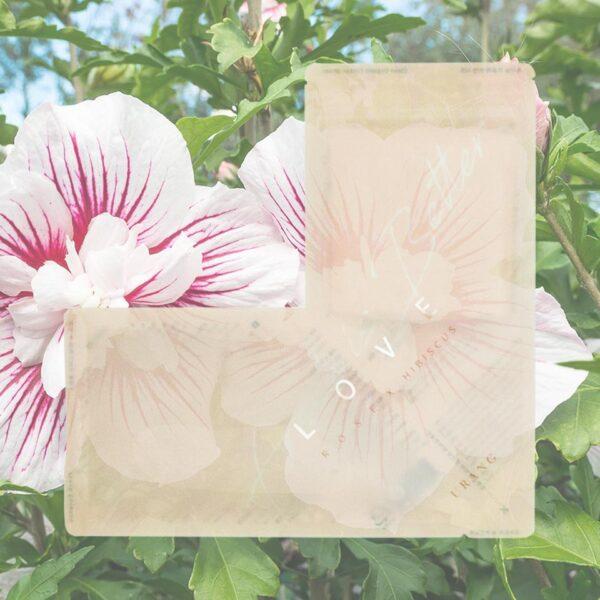 URANG Love Rose X Hibiscus Mask 100% cotton sheet