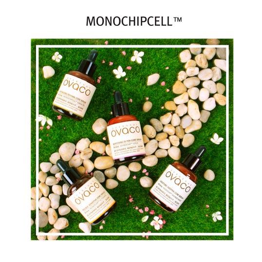 Ovaco Monochipcell series